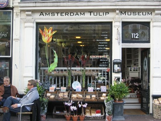 Outside the Amsterdam Tulip Museum, a view from the street