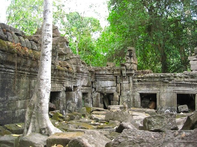 The jungle slowly eats away at the temples