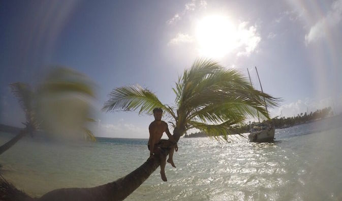 Man sitting on a palm tree on a beach