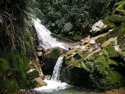 a waterfall in the jungle
