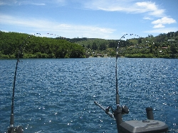Fishing on a beautiful day in Lake Taupo, New Zealand