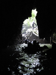 A peak into the Waitomo Glow Worm Caves