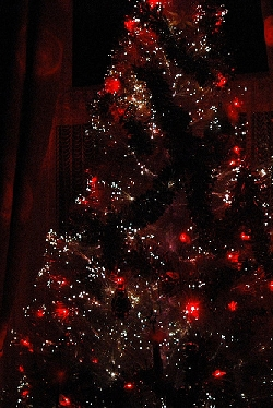 A Christmas tree decked out in holiday lights