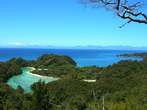 Gorgeous Abel Tasman National Park with a blue sky and green treetops