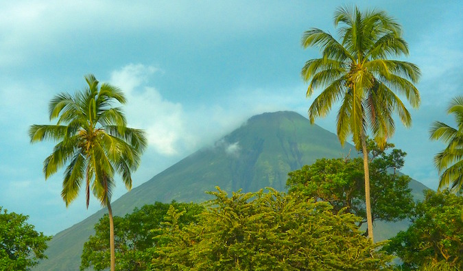the green palm trees on ometepe island