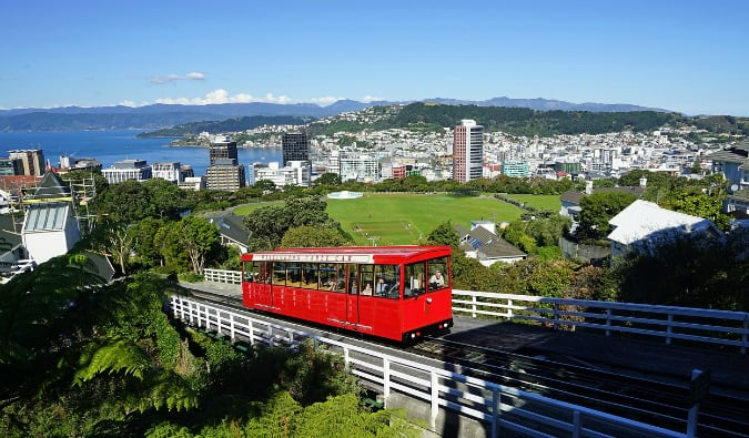 A view overlooking the city of Wellington, New Zealand in the summer