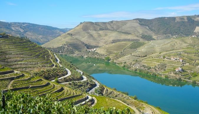 wineries in the douro valley portugal