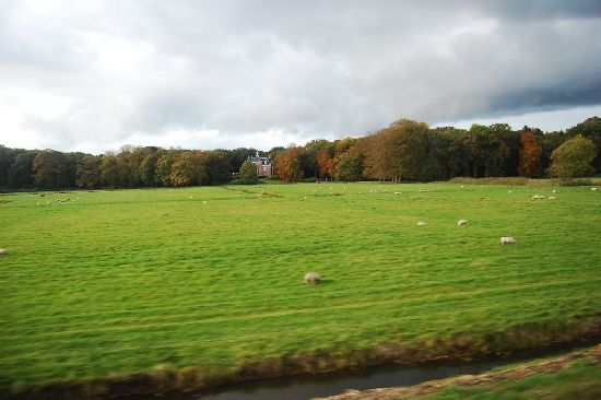 The Netherlands' Countryside with shed phrasing the green fields