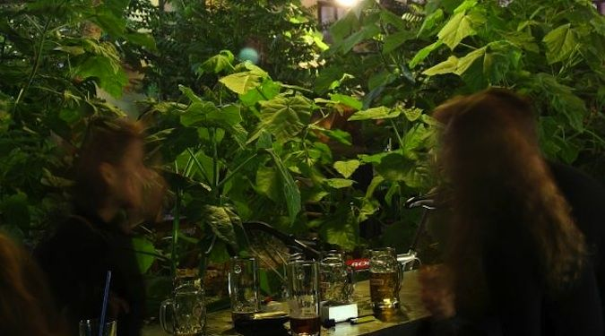 Grandio: an awesome Ruin Bar and hostel in Budapest, Hungry