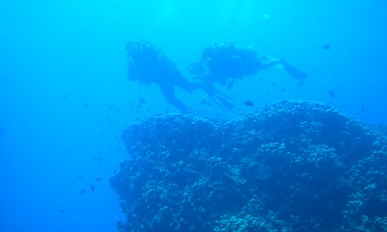 Swimming and scuba diving underwater in the Yasawa Islands