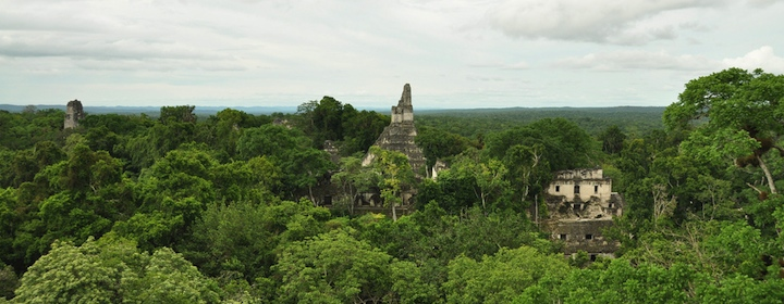 The ancient Mayan ruins of Tikal in the country of Guatemala