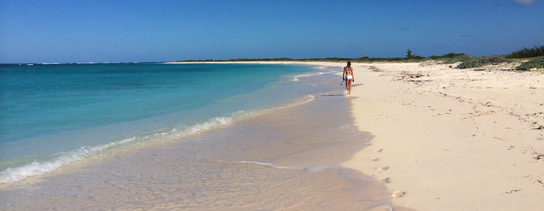 white sand beach on the island of anaegada in the BVIs