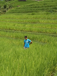 Nomadic Matt in a rice Patty field in Vietnam