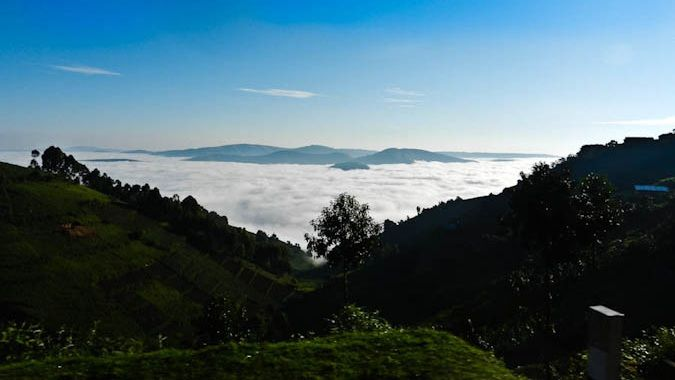 Breathtaking view of the mountains in Biwindi National Park in Uganda