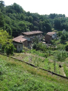 View of a wolfing farm in Italy