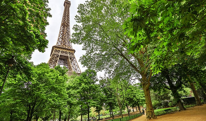 The Eiffel Tower poking through the greenery in the Champs de Mar neighborhood, Paris