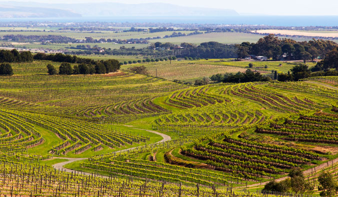 australia wine country