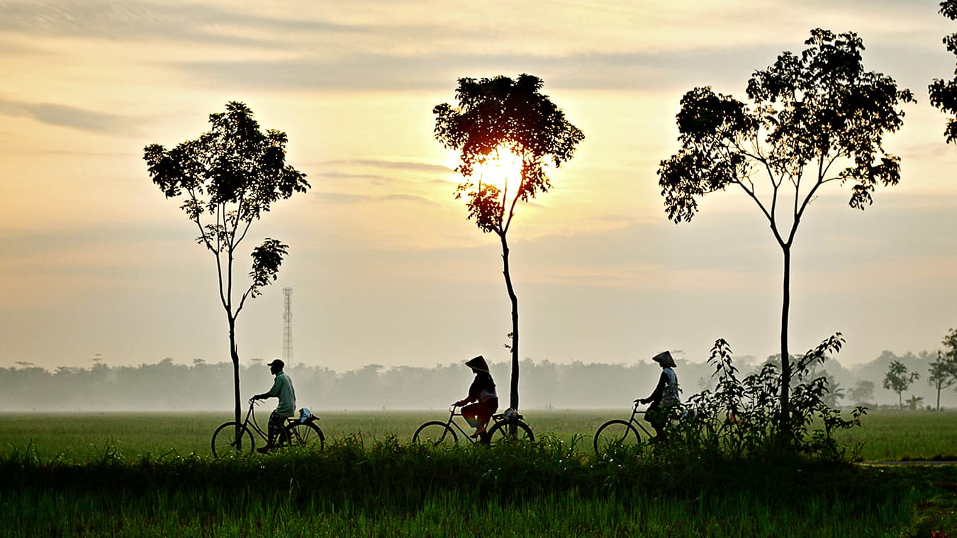 people riding a bicycle in Vietnam