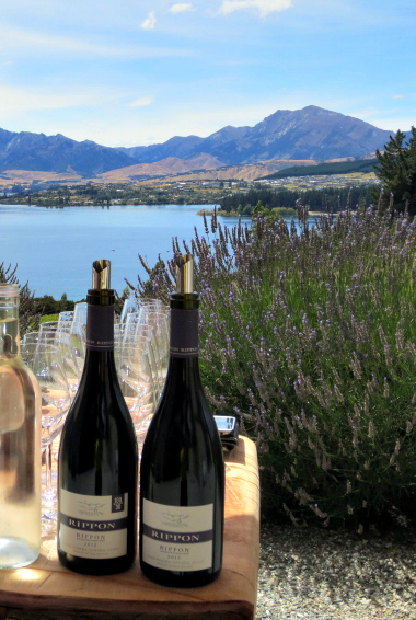 Two bottles of New Zealand wine with a lake and mountains in the bacground. Photo by purdyrns (flickr:@purdyrns)