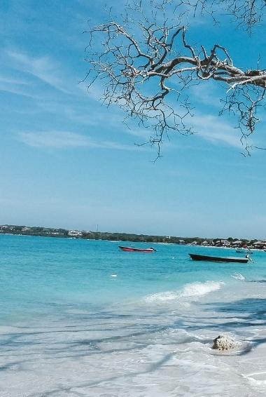 The white sand beach of Playa Blanca in Cartagena.