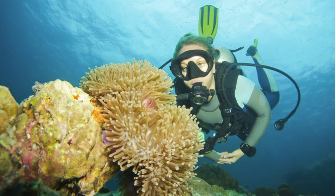 The Complete Guide to Diving in Koh Tao, Thailand in 2019
