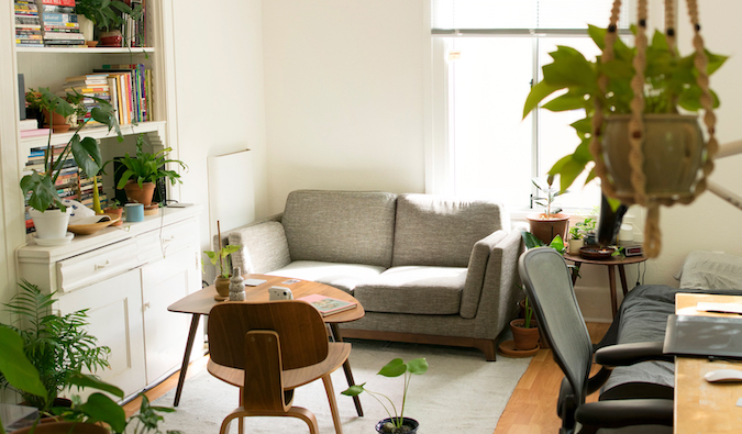 a cozy apartment with a couch and hanging plants