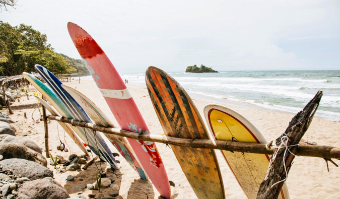 Surfboards lined up in the sand on the beach in Puerto Veijo, Costa Rica