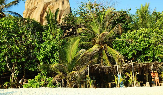 ein Strand auf den Seychellen
