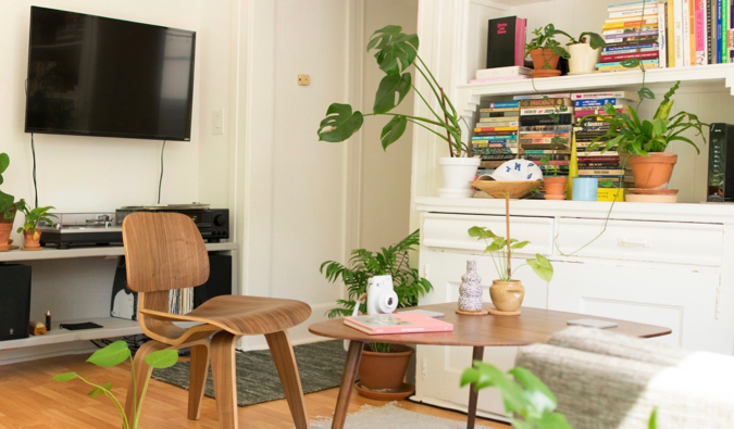 A cozy Airbnb apartment rental with lots of plants and light
