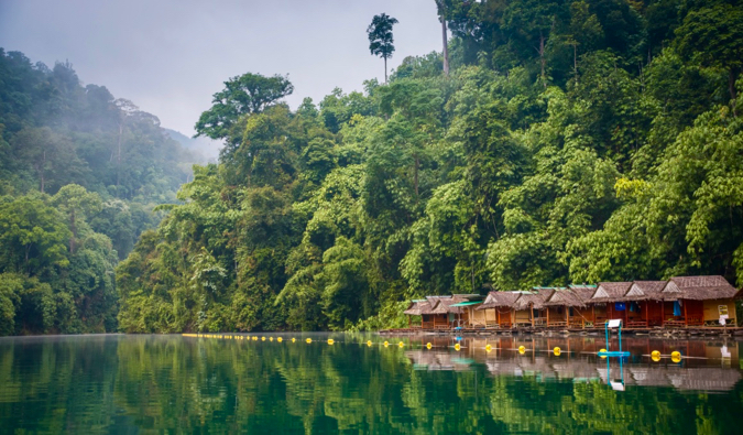 The lush, green tropical jungles of Thailand