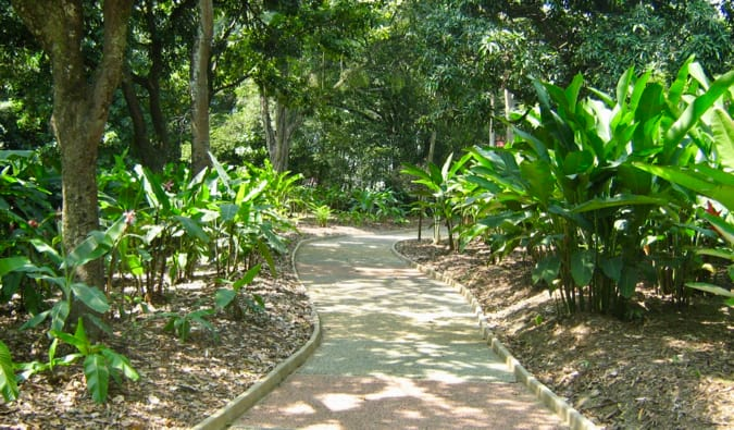An empty path in the botanical gardens in Medellin, Colombia