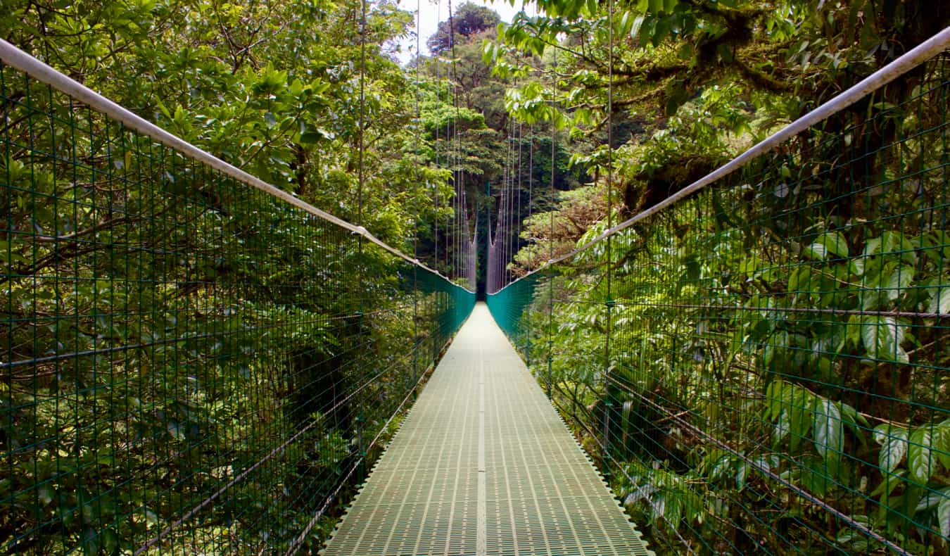 An empty bridge in the cloud forests of Monteverde, Costa Rica