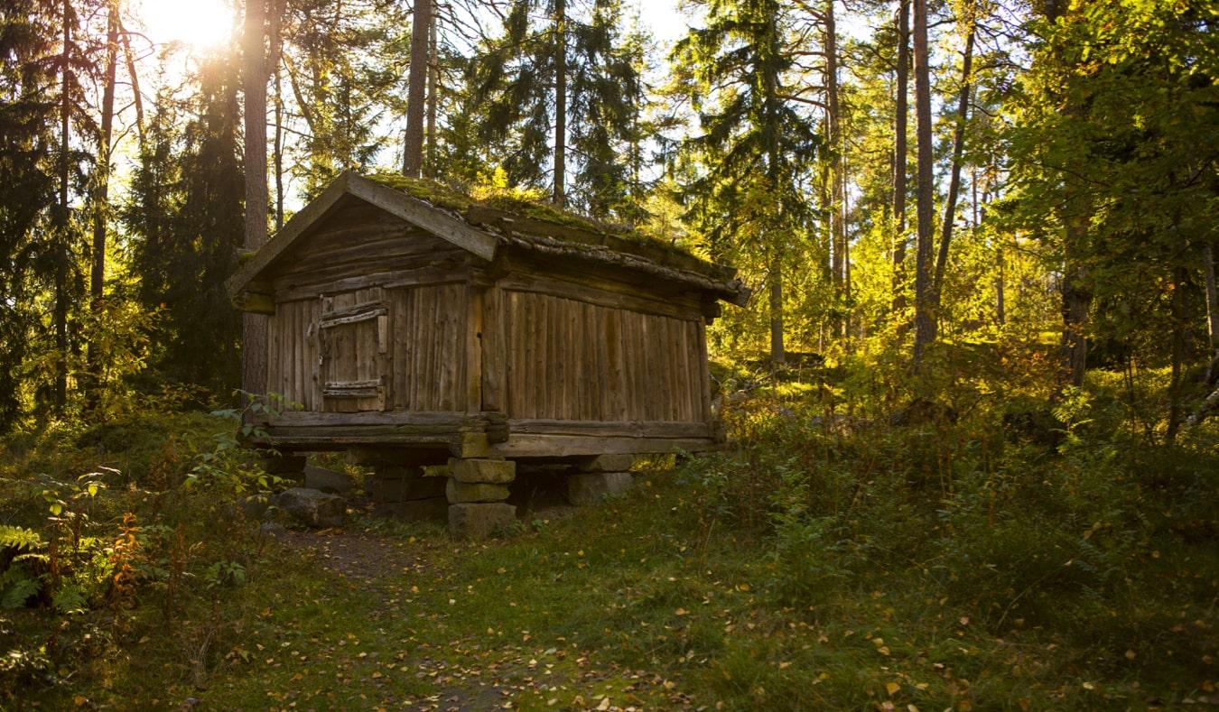 Старый деревянный дом на острове Сеурасаари в Хельсинки, Финляндия достопримечательности Хельсинки 18 лучших достопримечательностей Хельсинки helsinkithings19