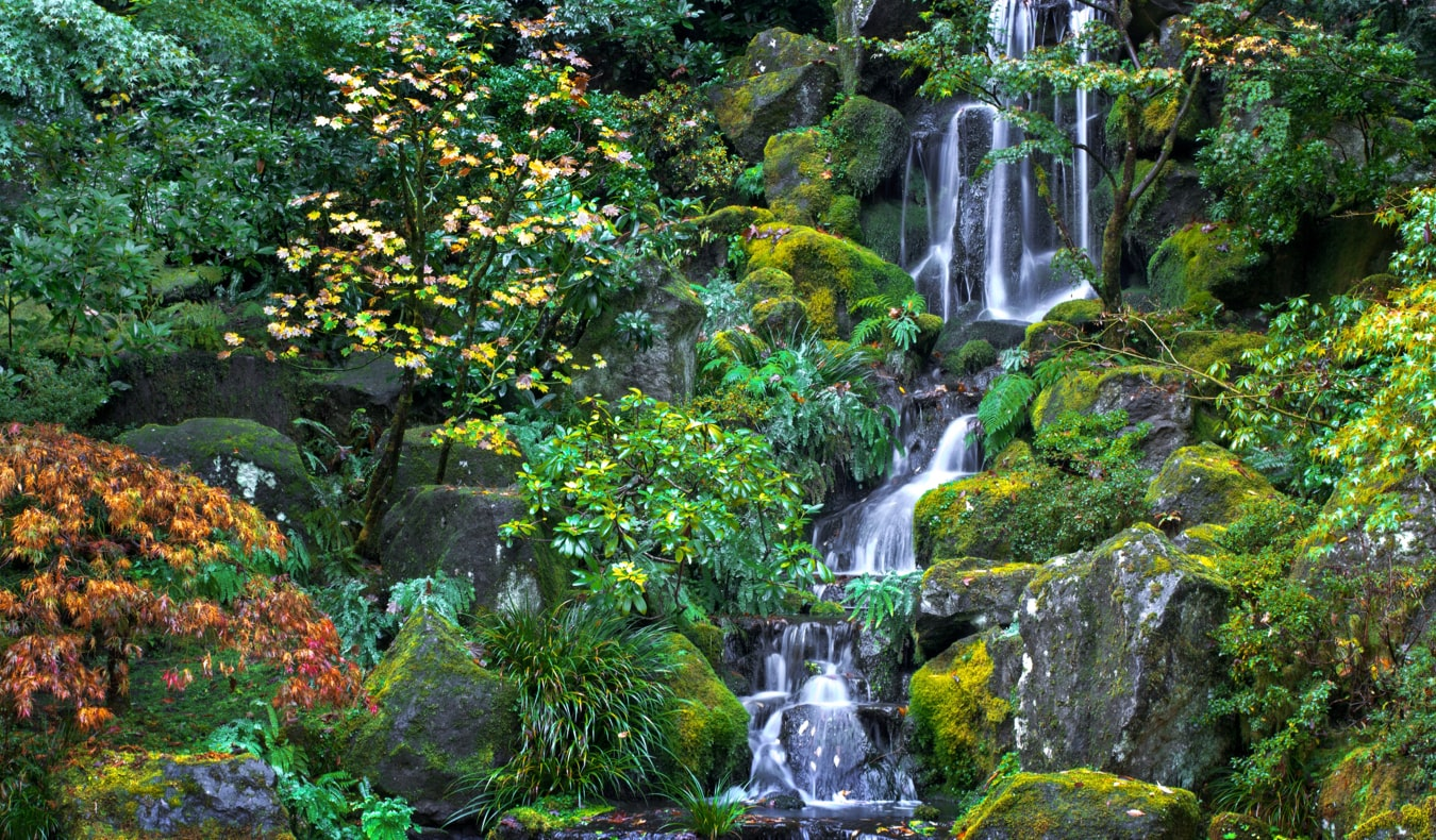 A beautiful waterfall in the Japanese Garden in Portland, Oregon