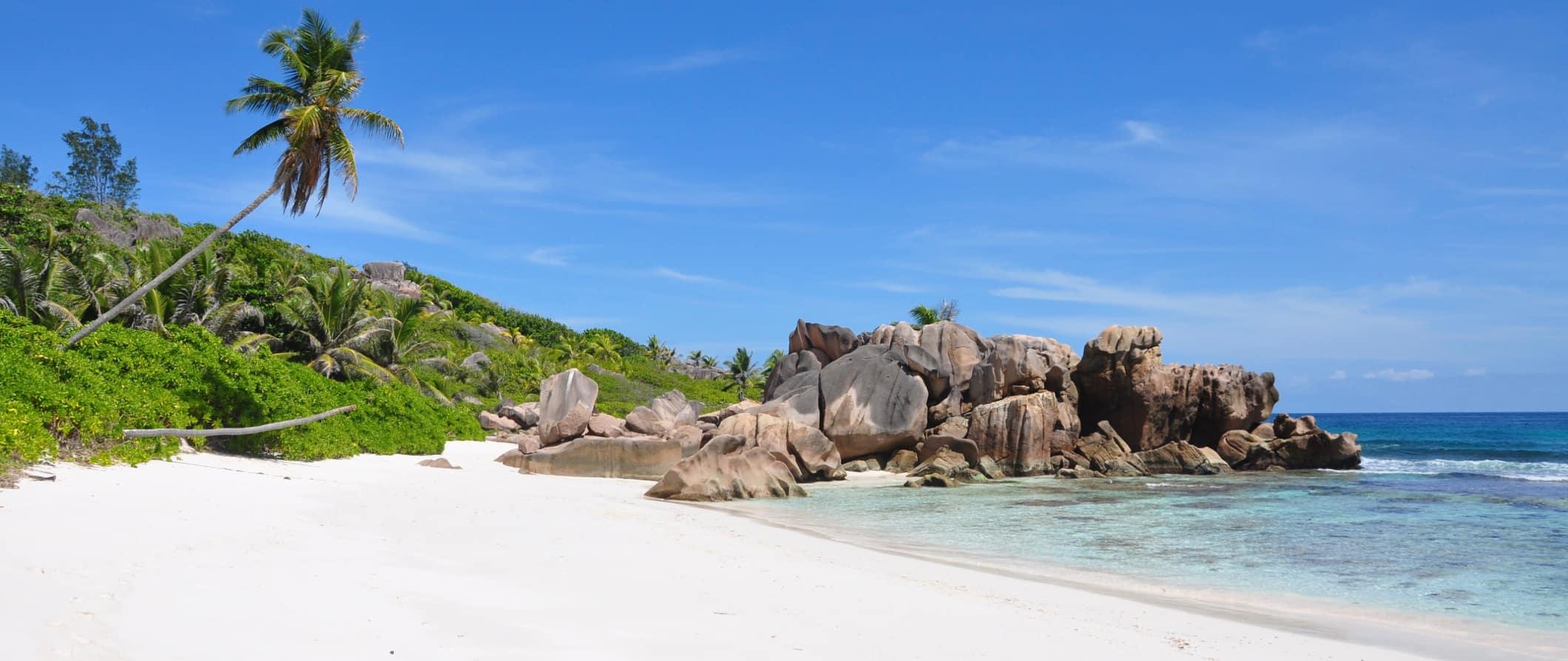 a tropical beach in Seychelles