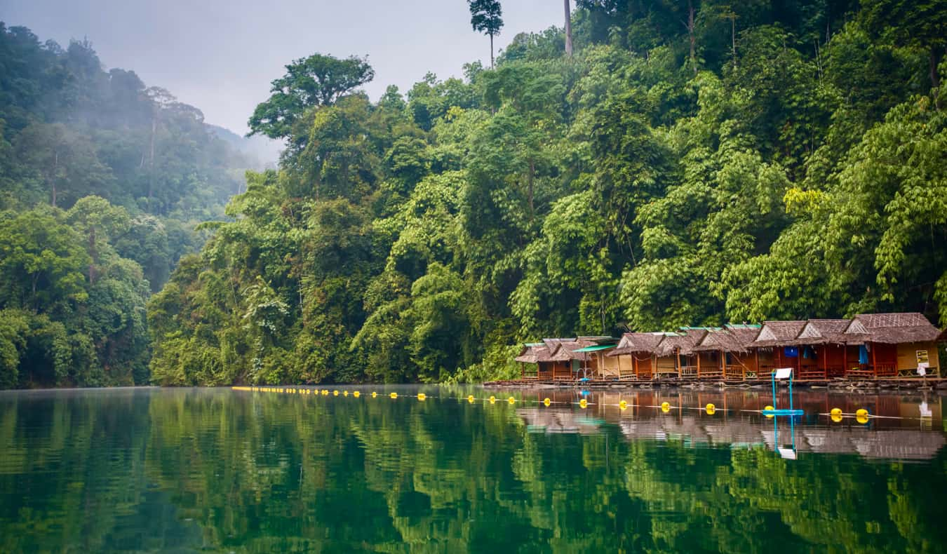 The lush, green jungles of Thailand surrounded by a river