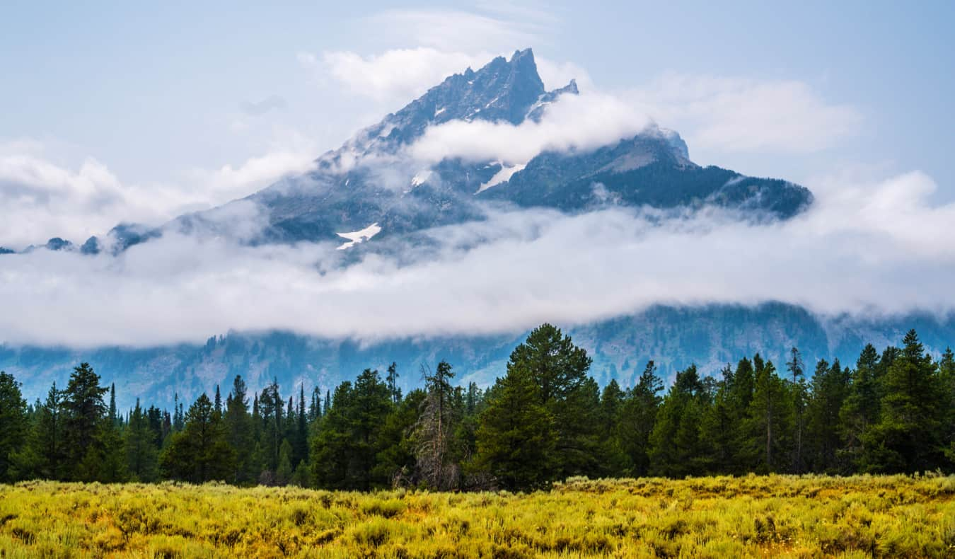 The stunning fields and forests of Yellowstone National Park, USA