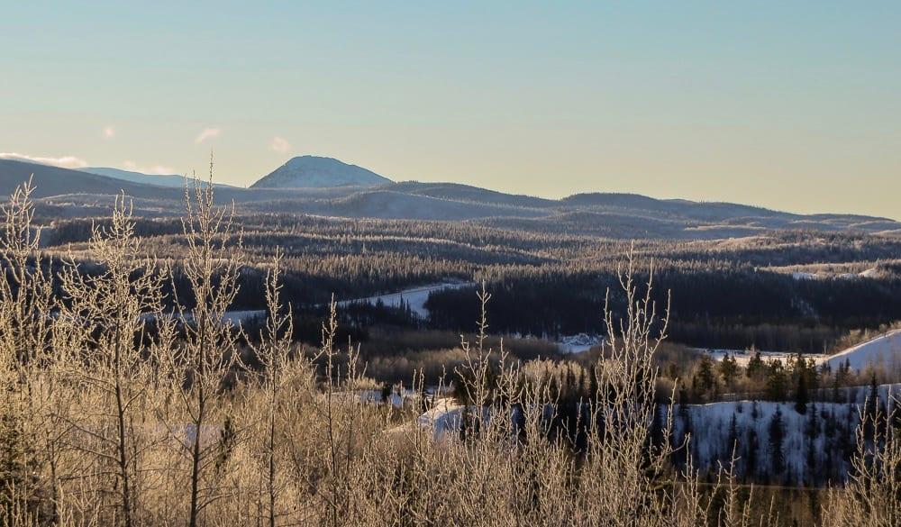 A wintery forest and hills near Faro, Yukon, Canada