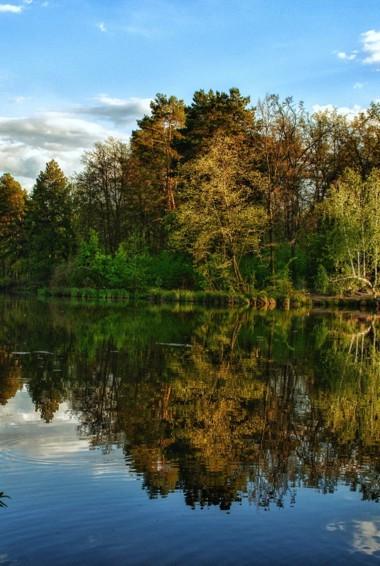 Calm waters and colorful trees in Belovezhskaya Pushcha national Park in Belarus