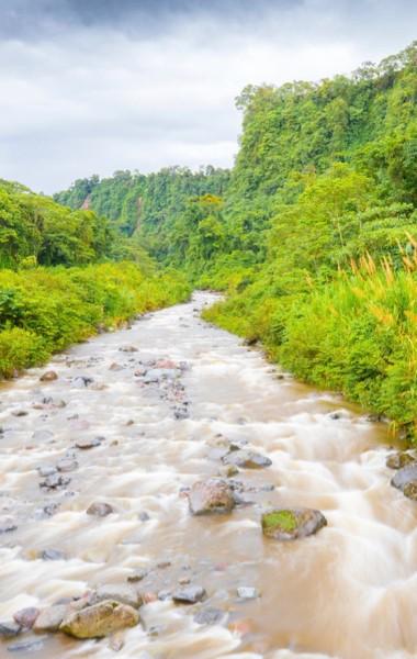 The Los Quetzales Trail in Boquete, Panama