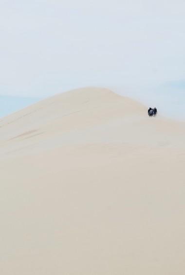 The massive sand dunes at Dunes de Pyla in France