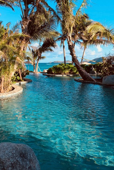 The beautiful waters and trees of Necker Island in the BVIs