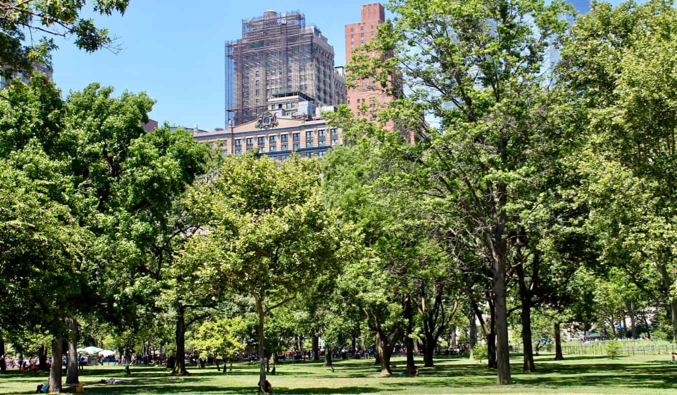 The green grass and fields of Battery Park in New York City, USA