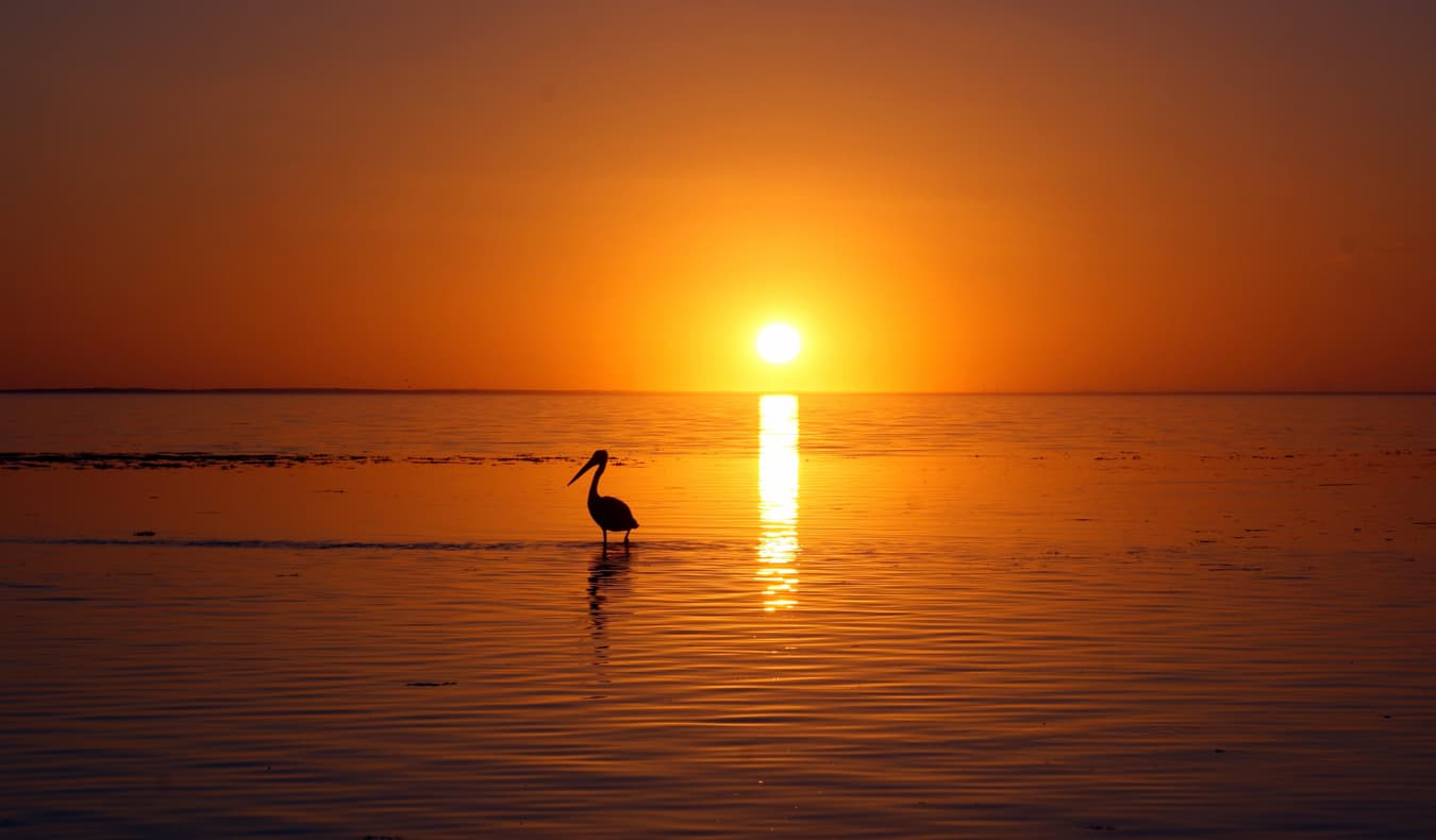 A vivid sunset at Coral Bay, Australia