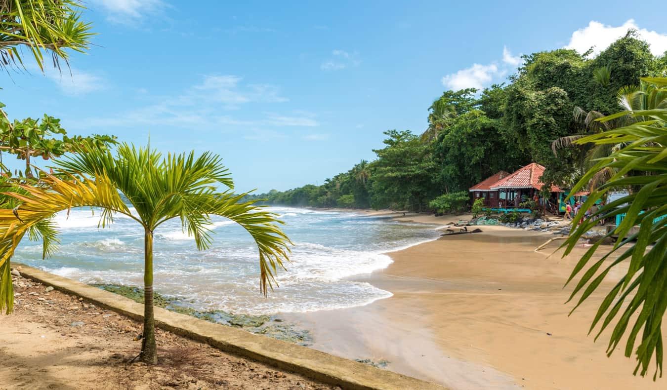 The beautiful coast of Cahuita in Costa Rica