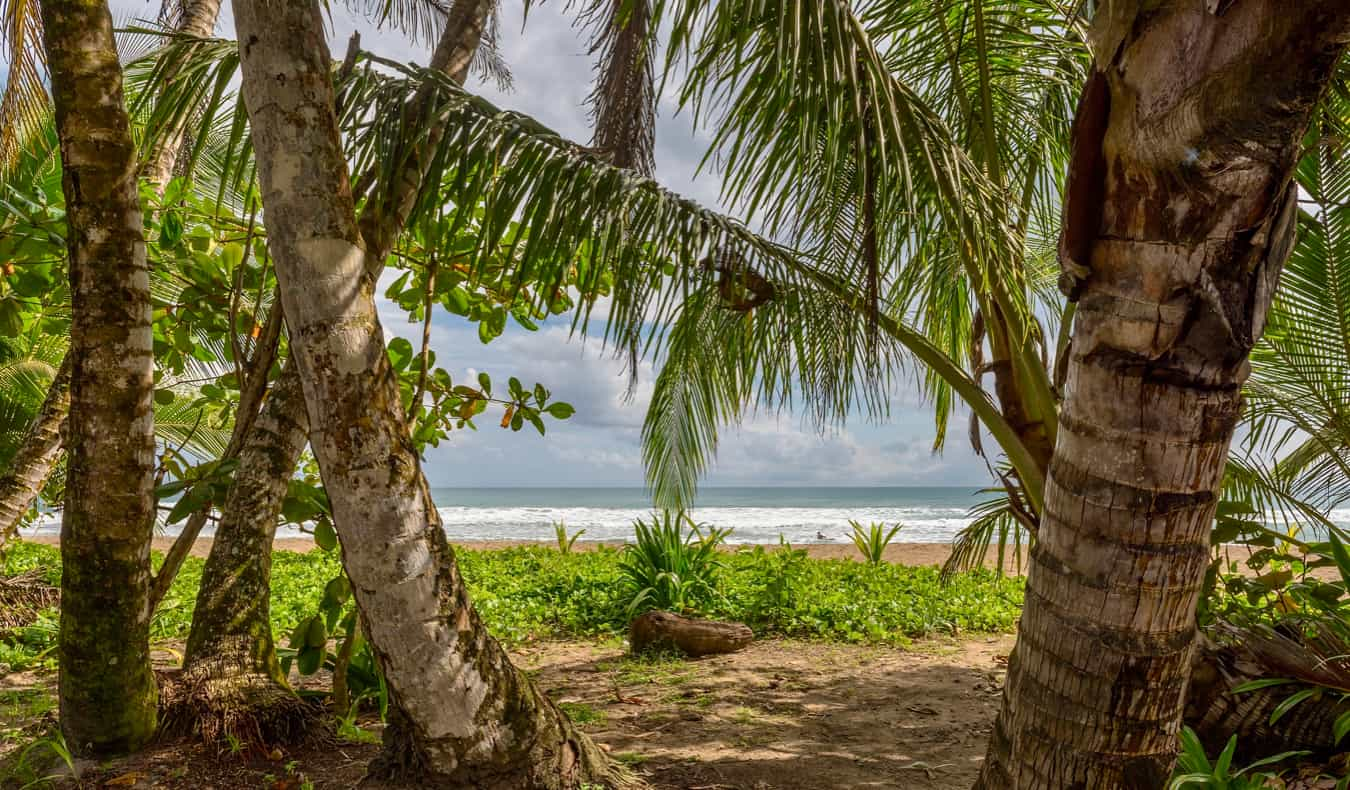 The coast of Costa Rica as seen through the trees on the beach of Punta Uva