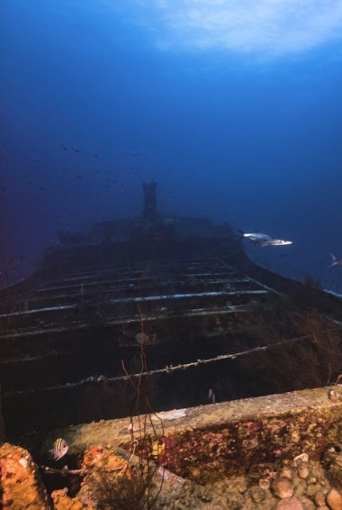 The Superior Producer wreck in Curacao