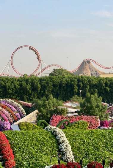 a garden and rides at Miracle Garden in Dubai, UAE