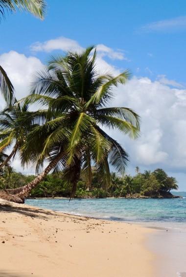 The beach of Bocas del Toro in Panama