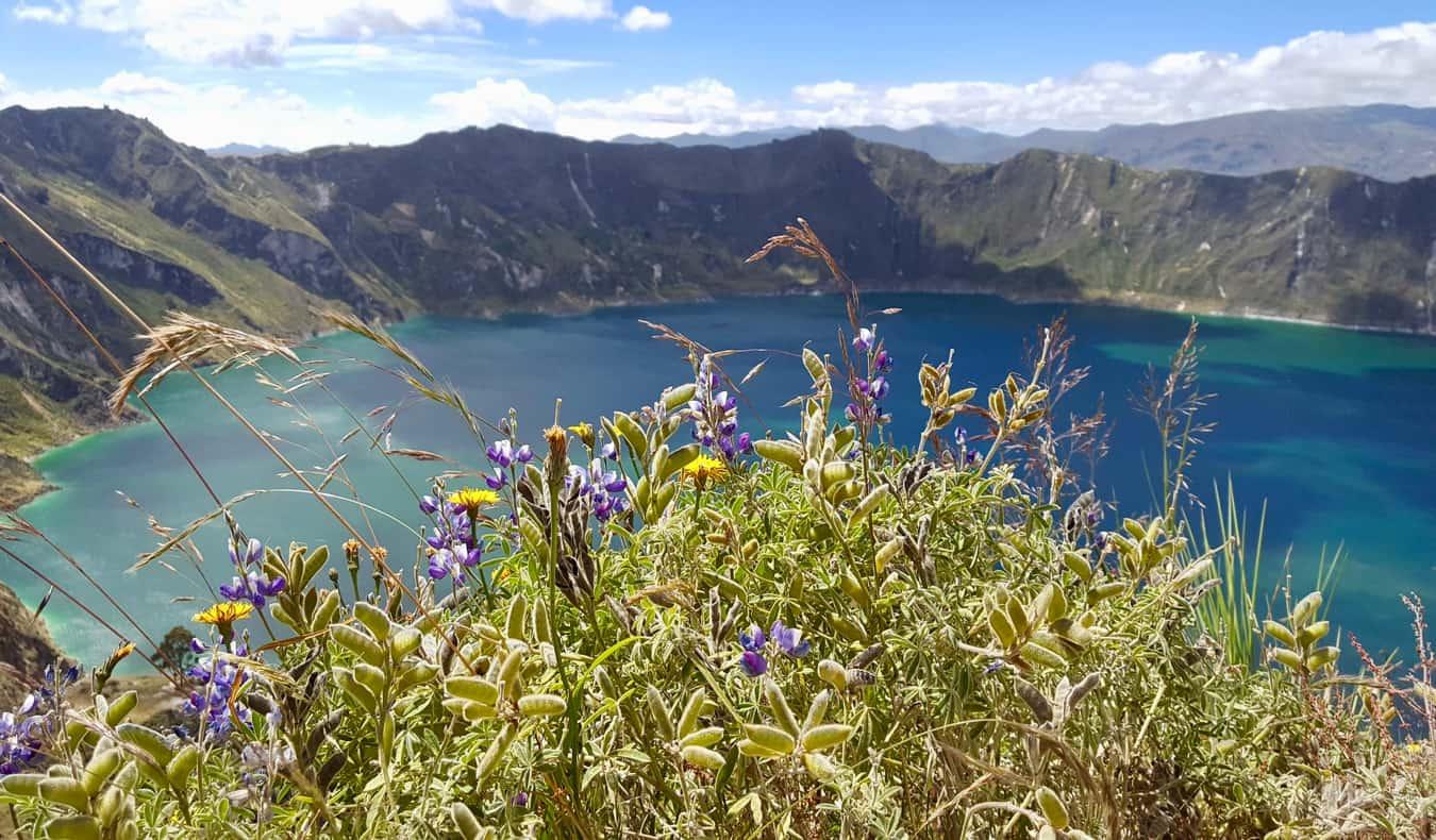 The massive volcanic crater lake Laguna Quilotoa near Quito, Ecuador